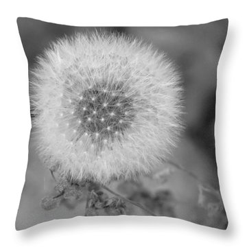 B And W Seed Head Throw Pillow