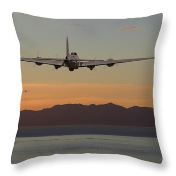 B17  Landfall Throw Pillow by Pat Speirs