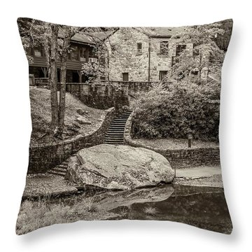 Babcock Sepia  Throw Pillow by Steve Harrington
