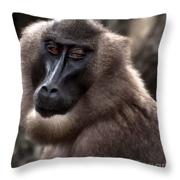 Baboon Throw Pillow by Loriannah Hespe