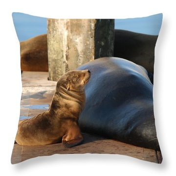 Baby And Me  Throw Pillow by Christy Pooschke