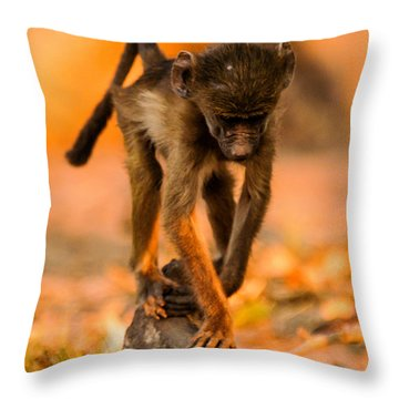 Baby Balance Throw Pillow by Alistair Lyne