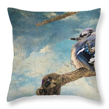 Baby Blue Jay In Winter Throw Pillow