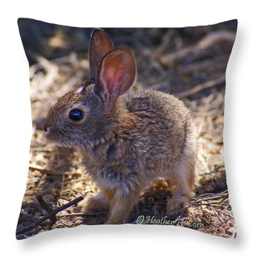 Baby Bunny Throw Pillow by Heather Coen
