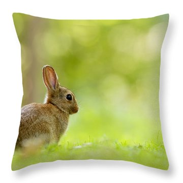 Baby Bunny In The Forest Throw Pillow
