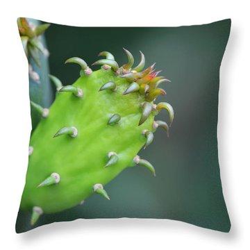 Baby Cactus - Macro Photography By Sharon Cummings Throw Pillow