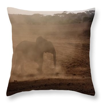 Throw Pillow featuring the photograph Baby Elephant  by Amanda Stadther