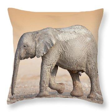 Baby Elephant  Throw Pillow by Johan Swanepoel