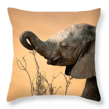 Baby Elephant Reaching For Branch Throw Pillow by Johan Swanepoel