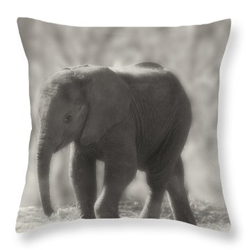 Baby Elephant Sepia Throw Pillow