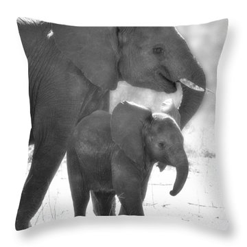 Baby Elephant With Mom Throw Pillow