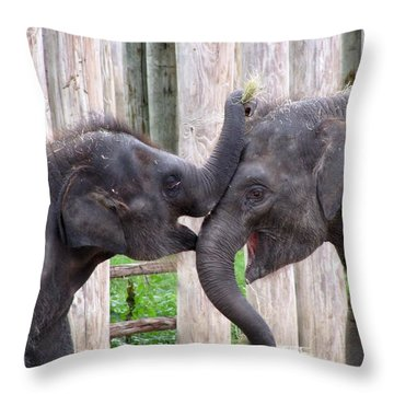 Baby Elephants - Bowie And Belle Throw Pillow by Pamela Critchlow
