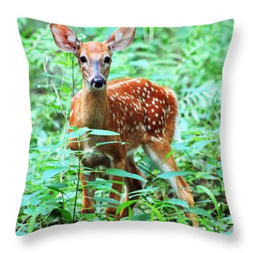 Throw Pillow featuring the photograph Baby Fawn by Lorna Rogers Photography