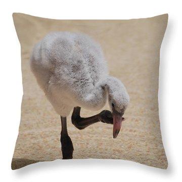 Baby Flamingo Throw Pillow by DejaVu Designs