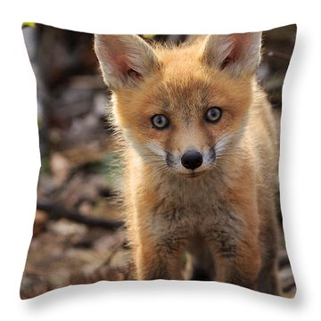 Baby In The Wild Throw Pillow by Everet Regal