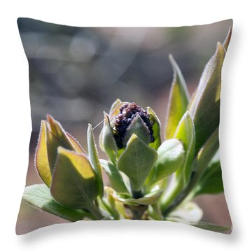 Baby Lilac Throw Pillow