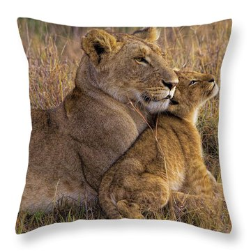 Baby Lions Throw Pillows