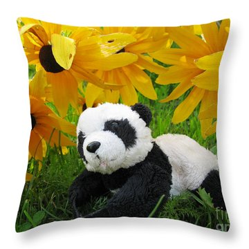 Throw Pillow featuring the photograph Baby Panda Under The Golden Sky by Ausra Huntington nee Paulauskaite