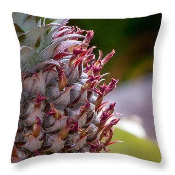 Baby White Pineapple Throw Pillow by Denise Bird