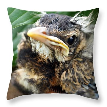 Baby Robin Among The Hosta's Throw Pillow
