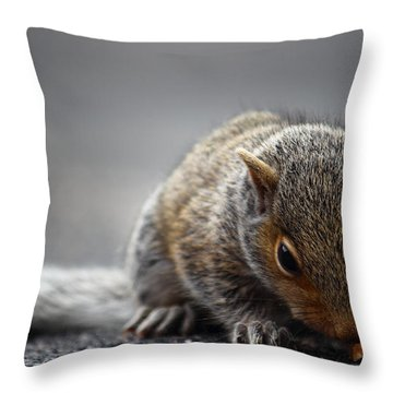Baby Squirrel Gets A Snack Throw Pillow