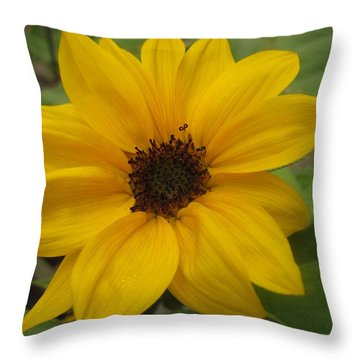 Baby Sunflower Throw Pillow