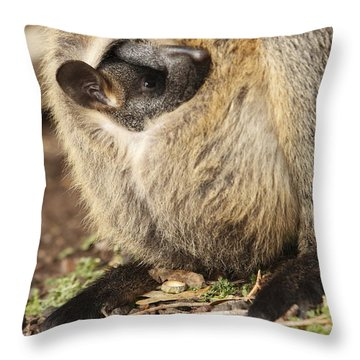 Baby Wallaby Throw Pillow
