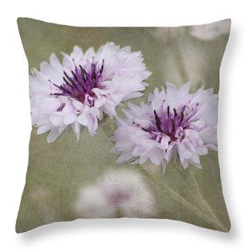 Bachelor Buttons - Flowers Throw Pillow