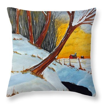 Back 40 Creek Throw Pillow
