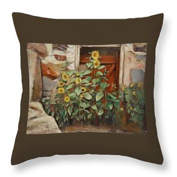 Back Door Throw Pillow by Sheila Diemert