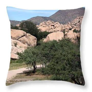 Back In The Canyon Again Throw Pillow by Joe Kozlowski