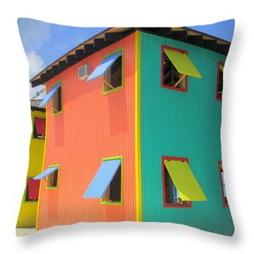 Back Of Cabins 1 Throw Pillow by Randall Weidner