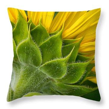 Back Of Sunflower Throw Pillow