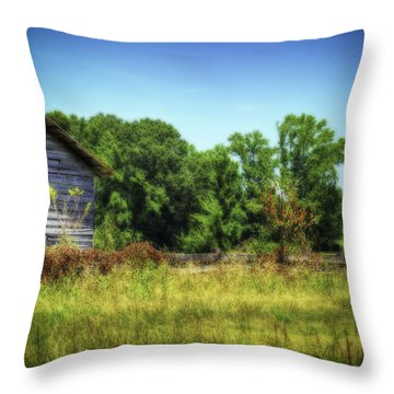 Back Road Barns Throw Pillow by Barry Jones