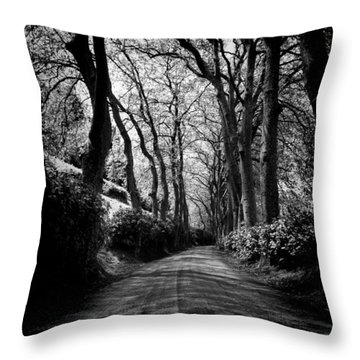 Back Road East 2 Throw Pillow