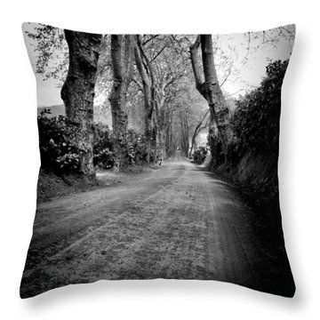 Back Road East Throw Pillow