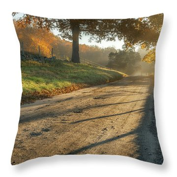 Back Road Morning Throw Pillow by Bill Wakeley
