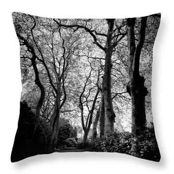 Back Road West Throw Pillow
