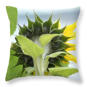 Throw Pillow featuring the photograph Rear View Image by E Faithe Lester