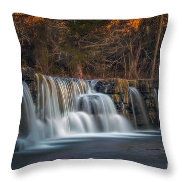 Back To Natural Dam Throw Pillow