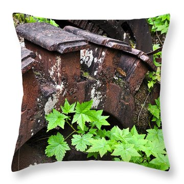 Throw Pillow featuring the photograph Back To The Forest by Cathy Mahnke