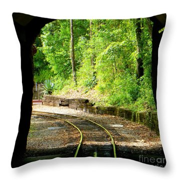 Back Tracking Throw Pillow by Joy Hardee