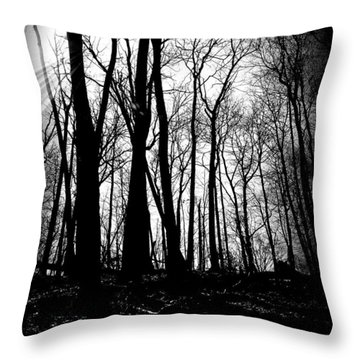 Backdunes In April Throw Pillow by Michelle Calkins