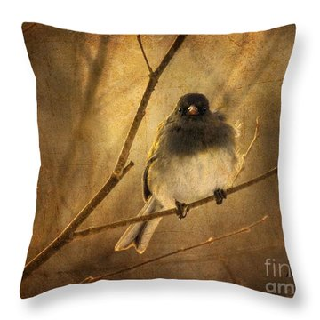 Backlit Birdie Being Buffeted  Throw Pillow