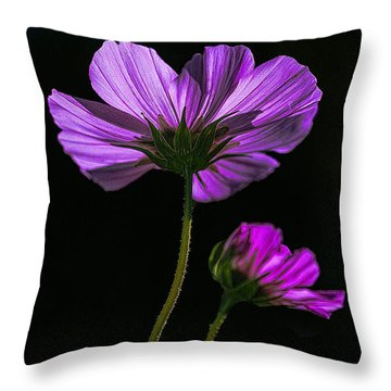 Backlit Blossoms Throw Pillow