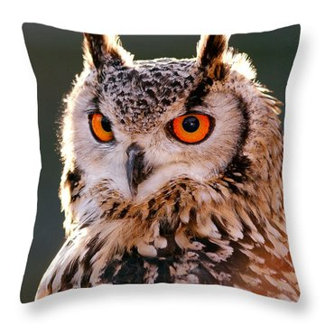 Backlit Eagle Owl Throw Pillow by Roeselien Raimond