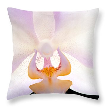 Backlit Orchid Throw Pillow by David Perry Lawrence