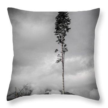 Lone Tree Landscape  Throw Pillow