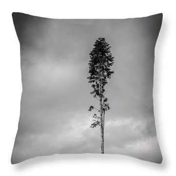 Lone Tree Landscape  Throw Pillow