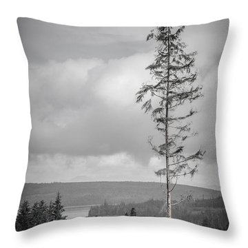 Tall Tree View Throw Pillow